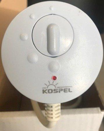 """Grzałka elektryczna z termostatem GRW-4,5kW/400V, 6/4"""""""